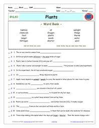 differentiated video worksheet quiz u0026 ans for bill nye plants