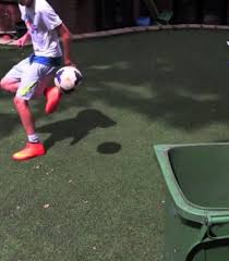 Backyard Football Free The Best Trick Shots You Will Ever See In One Backyard The18