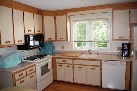 Refinish Oak Kitchen Cabinets by Oak Kitchen Cabinets Designs Ideas