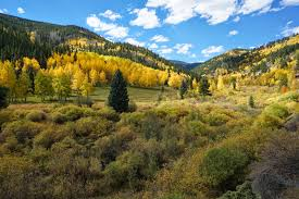 Colorado Fall Colors Map by 5 Autumn Drives Your Guide To Seeing Fall Colors In Colorado