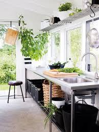 plante cuisine decoration les plantes animent la cuisine ma plante mon bonheur