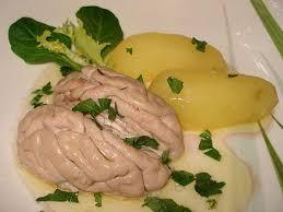 cuisiner de la cervelle de porc les meilleures recettes de cervelle