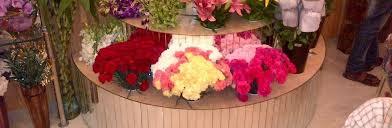 Fern N Decor Ferns N Petals Motera Decorators Motera Ahmedabad