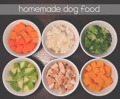 what foods shih tzus can u0027t eat lists of bad u0026 good foods included