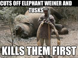 Elephant Meme - cuts off elephant weiner and tusks kills them first good guy