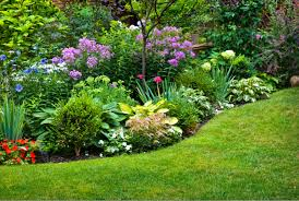 beautiful flower bed ideas to adopt gardening steps