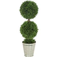 live outdoor topiary trees outdoor designs