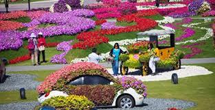 world best and big flower garden sarkar zone life began in a