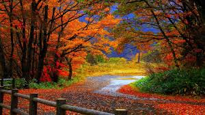 fall landscape photo album home design ideas images of idolza