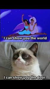 Best Grumpy Cat Memes - top 10 funniest grumpy cat memes cats amino