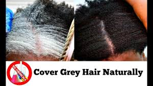 african american henna hair dye for gray hair how to turn white or grey hair into black naturally with no