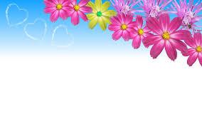 flower wallpaper backgrounds group 89