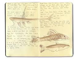 lima peru sketch journal