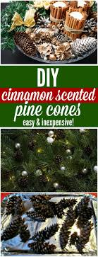 best 25 scented pinecones ideas on fall smells diy