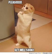 Get Well Soon Meme Funny - get well soon nicole undead labs forums