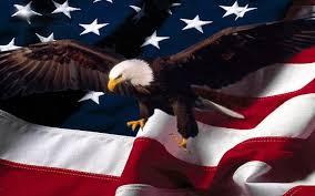 Eagles Flag Amercan People Wallpapers Hd Page 9