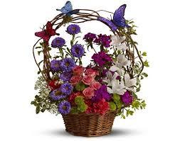 elkton florist butterflies arrangement congratulatory flowers gifts