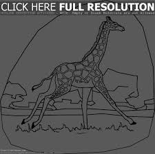 giraffe coloring pages kids printable free coloring pages 6965