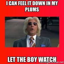 Ashley Schaeffer Meme - feel it in my plums memes it best of the funny meme