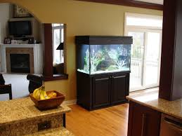 simple aquarium stands ideas http www lookmyhomes com choosing