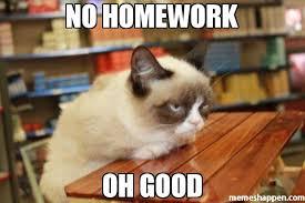 Grumpy Cat No Meme - no homework oh good meme grumpy cat table 35582 memeshappen