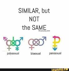 Bisexual Memes - similar but not the same polysexual bisexual and pansexual