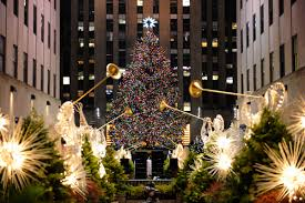 Rockefeller Tree Spruce From Catskill S Chosen As Rockefeller Center Tree