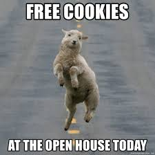 Open House Meme - free cookies at the open house today excited sheep meme generator