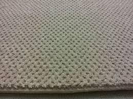 Kraus Laminate Flooring Reviews Carpeting By Carpets Of Highwood