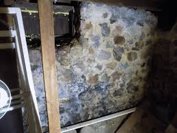 home mold inspection and removal