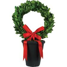 boxwood wreath pride garden products 8 in dia preserved boxwood wreath in black