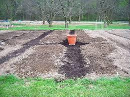 How To Start A Garden Bed 105 Best Garden Compost Worms Fertilizers Mulch And Soil