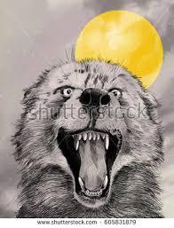 wolf illustration lunging snarling wide stock illustration