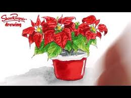 how to draw a poinsettia for a christmas card youtube