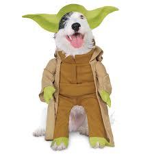 Lumiere Halloween Costume Yoda Costume Pets Rubie U0027s Shopdisney