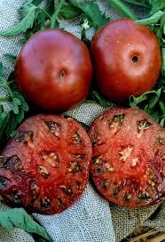 58 best tomatos images on pinterest heirloom tomatoes plants