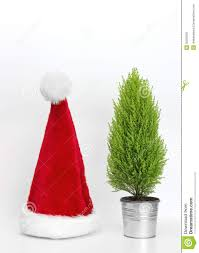 santa hat and little christmas tree stock image image 35526361