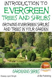 cheap types evergreen trees find types evergreen trees deals on