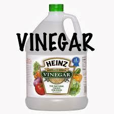two men and a little farm lemon juice and vinegar fire ant killer