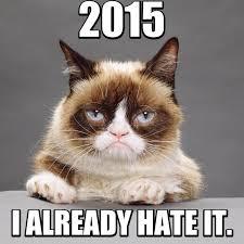 Grumpy Cat Snow Meme - happy new year grumpy cat