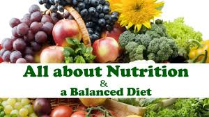 all about nutrition a balanced diet biology science