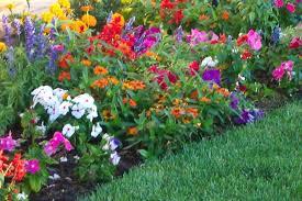 Garden Plans Zone - simple flower garden design ideas with small flower garden design