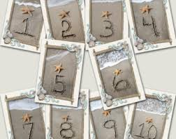 themed table numbers seaside shells table number cards