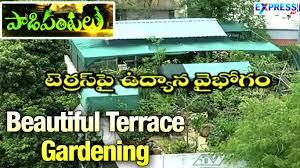 terrace gardening beautiful wonderful terrace gardening by rama raju in hyderabad