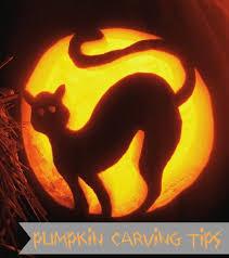 22 best it u0027s pumpkin time images on pinterest carved pumpkins