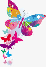 colorful butterfly patterns dynamic lines butterfly pattern