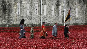 on armistice day in u k a sea of red poppies honors the fallen