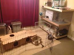 Rabbit Hutch Plans Pdf Double Story Rabbit Hutch Plans Plans Free