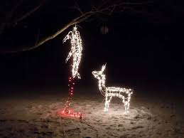 Hanging Christmas Lights by Deer Christmas Lights Christmas Lights Decoration
