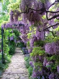 2481 best gorgeous gardens images on pinterest landscaping